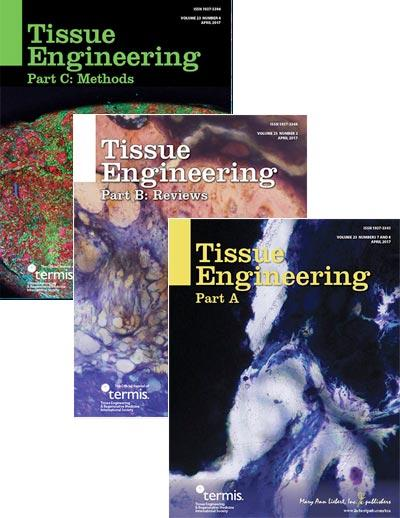 CAPTION Tissue Engineering is the preeminent, biomedical journal advancing the field with cutting-edge research and applications on all aspects of tissue growth and regeneration. CREDIT © 2017, Mary Ann Liebert, Inc., publishers