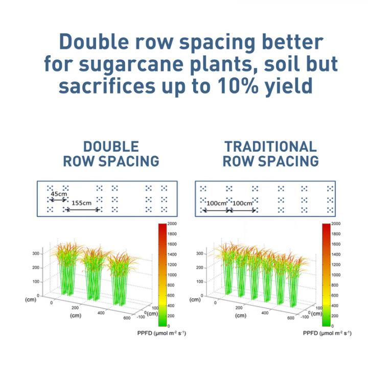 CAPTION Double row spacing is better for sugarcane plants, soil but sacrifices up to 10% of yield.
