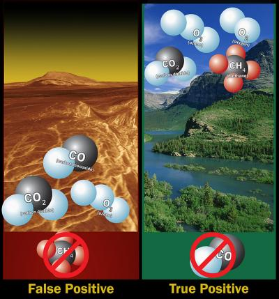 Left: Ozone molecules in a planet's atmosphere could indicate biological activity, but ozone, carbon dioxide and carbon monoxide -- without methane, is likely a false positive. Right: Ozone, oxygen, carbon dioxide and methane -- without carbon monoxide, indicate a possible true positive.