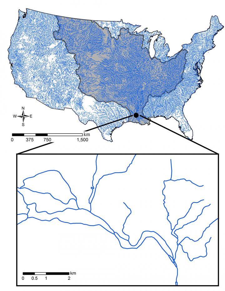 The 1:100,000 NHDPlusV1 stream network over the conterminous US. The Mississippi basin is emphasized dark blue. The inserted box shows an example of complexity within stream networks, including braided streams.  Credit: Yin-Phan Tsang, Center for Systems Integration and Sustainability, Michigan State University