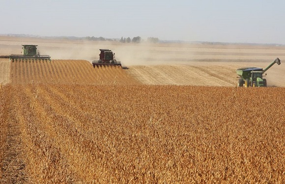 Soybean harvest in Iowa. Climate change could impact agricultural productivity. Photo. Thinkstock